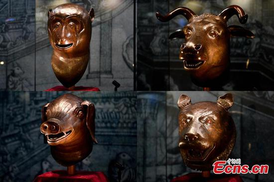 Bronze animal heads of Old Summer Palace exhibited in Guangdong