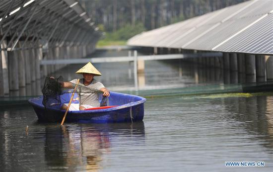Photovoltaic power plant built above fish pond in Jiangsu