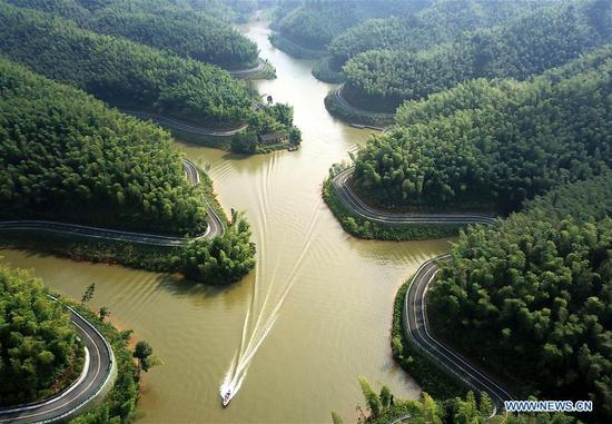Aerial view of Zhuhai state forest park in Guizhou