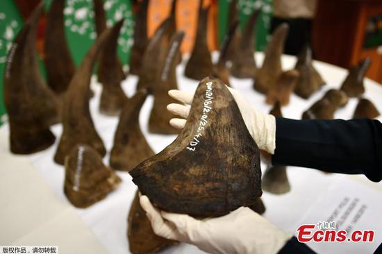 Malaysia seizes rhino horns worth $12 million