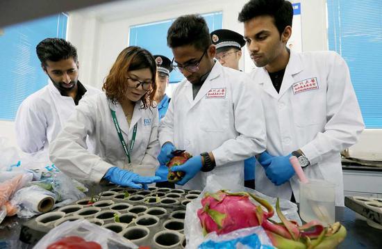 Overseas students seek study, internship experiences in China