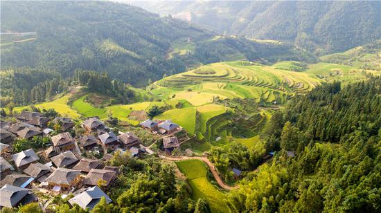 Picturesque terraced fields in Guizhou
