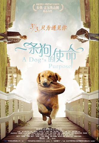 Alibaba, Amblin start filming 'A Dog's Journey'