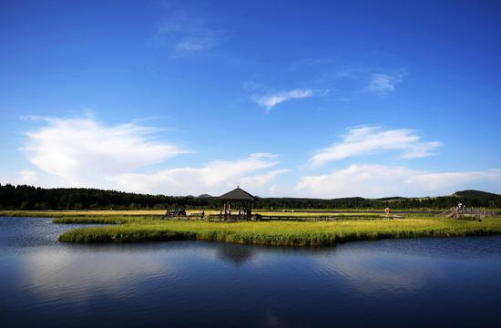 Tourists visit the Qixing Lake Scenic Area of Saihanba National Forest Park in north China's Hebei Province, July 11, 2017. (Xinhua/Wang Xiao)