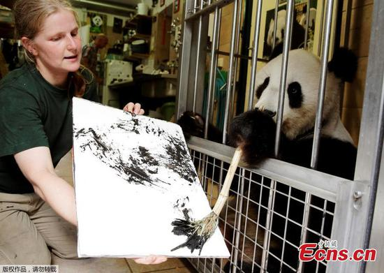 Cuddliest artist in Vienna, panda's paintings go on sale