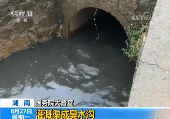 The polluted water in Zhuzhou, Hunan Province. (Photo/CCTV)