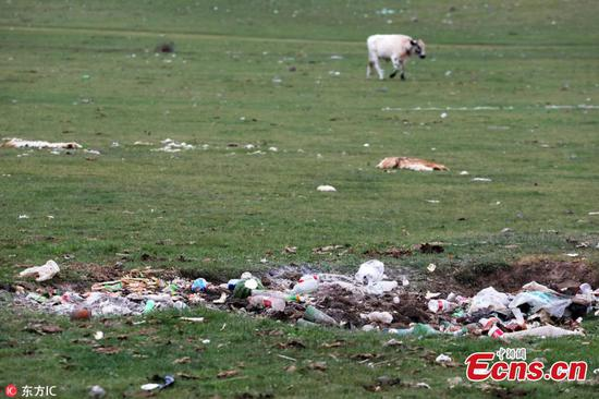 Littering a headache at Xinjiang tourist attraction