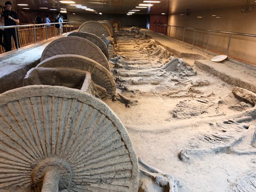 Pit No.1 of the Funerary Horse Pits at Zibo's Chinese Ancient Cart Museum (Photo: Xu Liuliu/GT)