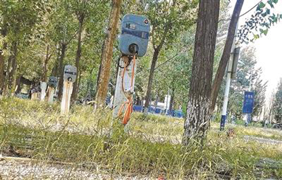Electric vehicle charging poles have fallen into disrepair near Beijing's Xiedao Resort. (Photo/Beijing Youth Daily)