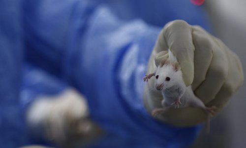 Lab for experimenting on rats opens in Guangdong