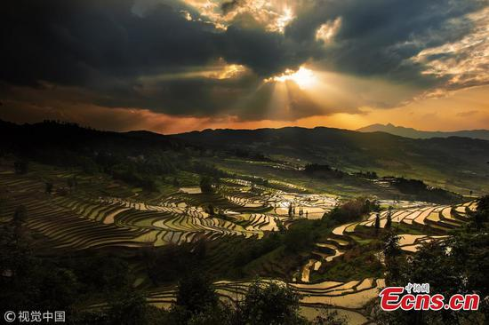 Amazing terraced fields in Yuanyang
