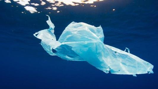 China-made degradable plastics promise end to ocean pollution