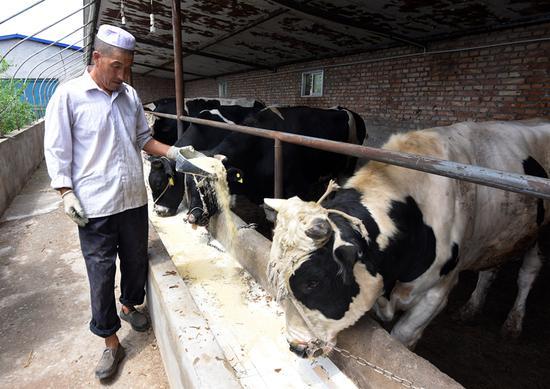 (Photo By Deng Jia / Asian Development Bank)