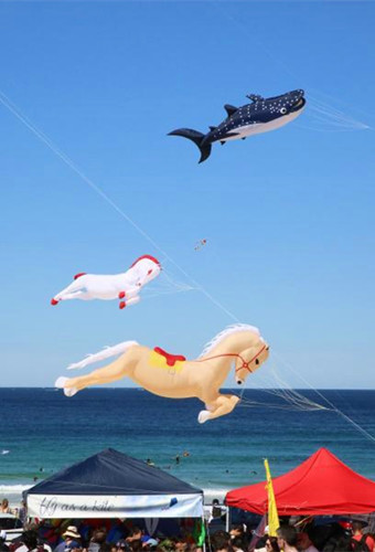 Sydney welcomes annual Kite Flying Festival