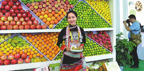 Staff member displays high-quality fruit produced in Yunnan at the province's stand during the event. (Photo by WU XIAOPING/FOR CHINA DAILY)