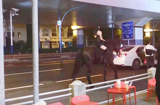 Black Beauty trots into police warning