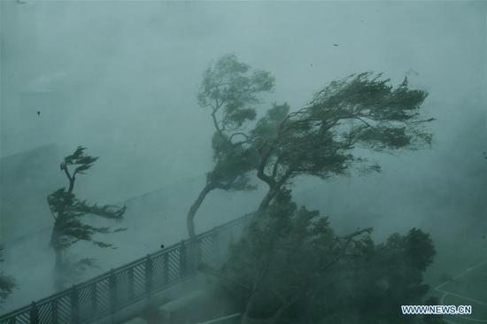 Transport ministry calls for enhanced precaution against Typhoon Mangkhut