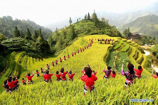 In pics: Chinese farmers greet first harvest festival