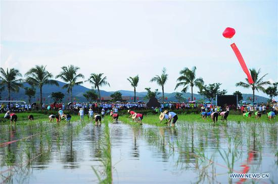 A rice transplanting contest is held at a national rice theme park in Sanya, south China's Hainan Province, Sept. 23, 2018. People across China hold various activities to celebrate the country's first Farmers' Harvest Festival, which falls on Sept. 23 this year. (Xinhua/Sha Xiaofeng)