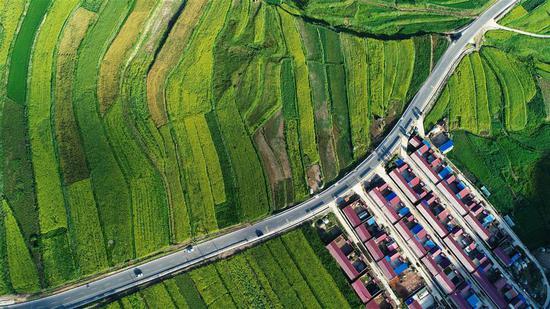 Poverty on the wane in uninhabitable Xihaigu
