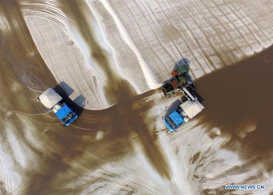 Saltworks enter harvest season in east China's Shandong