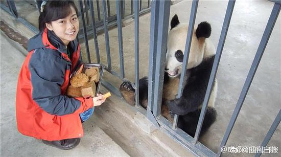 Chinese woman visits South Korea to meet panda she helped breed