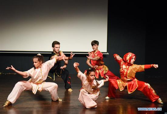 Kung Fu show enchants audience at Istanbul university