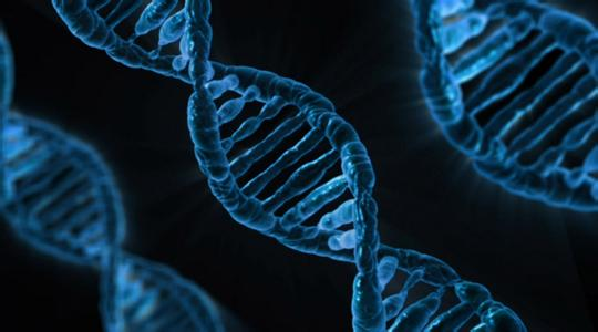 BGI publishes largest Chinese genome study