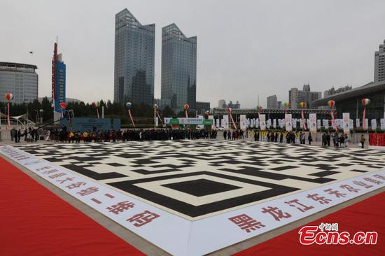 World's largest QR code, made using ten tons of rice, in Harbin