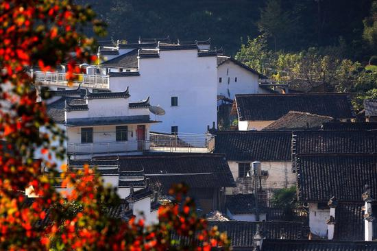 Autumn scenery of Wuyuan county, Jiangxi Province