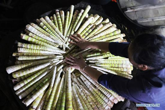 Bamboo-related industry boosts income for people
