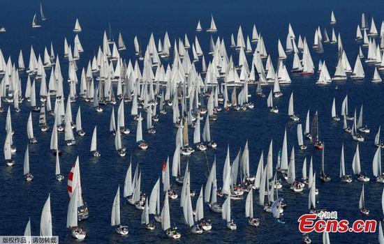 Sailing boats gather for Barcolana regatta