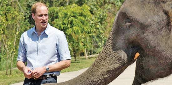 UK royal praises China's ivory efforts