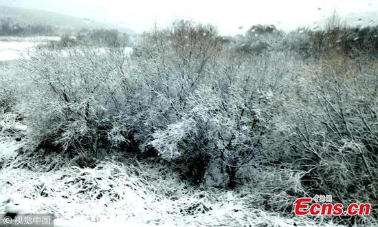 First snow hits northeastern city