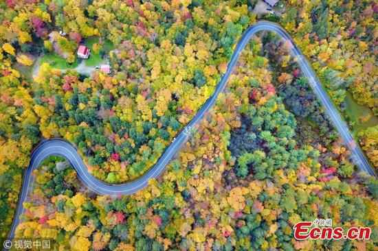 Photo shows Vermont's mesmerizing fall foliage