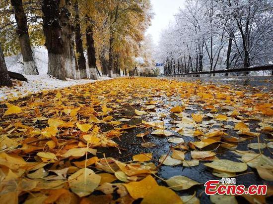Snow hits northwest tourist attraction