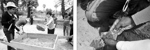 Shanghai Museum claims finding Chinese ceramic in Lankan ruins