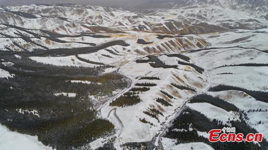降雪在甘肃创造了明信片般的场景