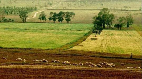 China mulls 2nd draft revision on rural land contract law