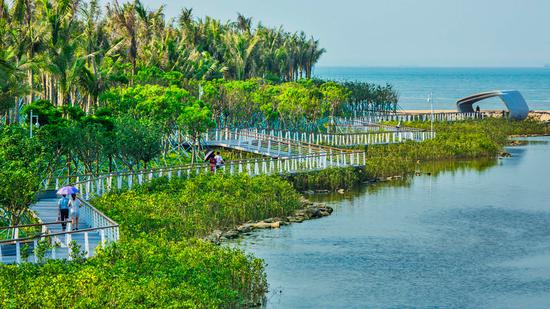 新的湿地有助于转变旅游资本