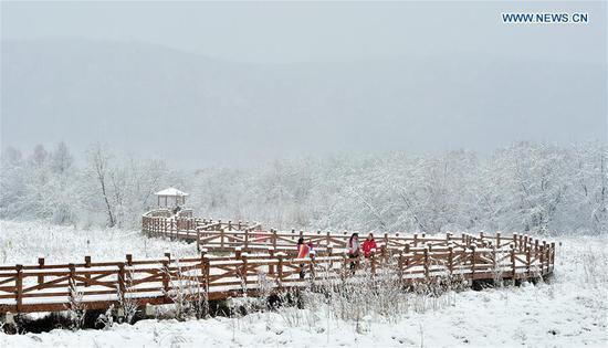 Snowfall hits Hulun Buir, N China's Inner Mongolia