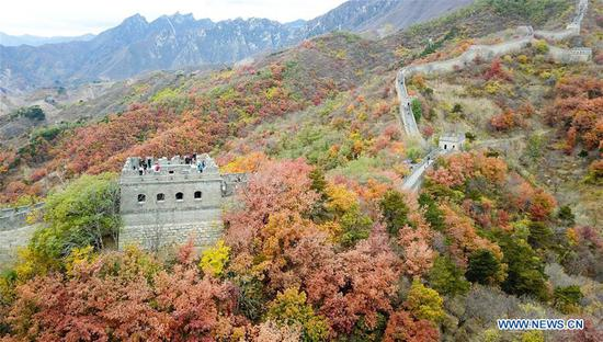 Autumn scenery of Mutianyu Great Wall in Beijing