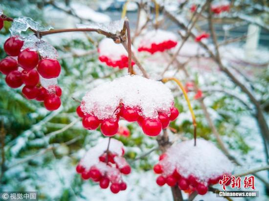 First snow falls in Changchun
