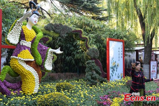 100,000 chrysanthemums bloom at Jinan flower festival