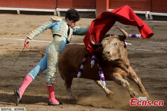 Bullfighting event in Peru