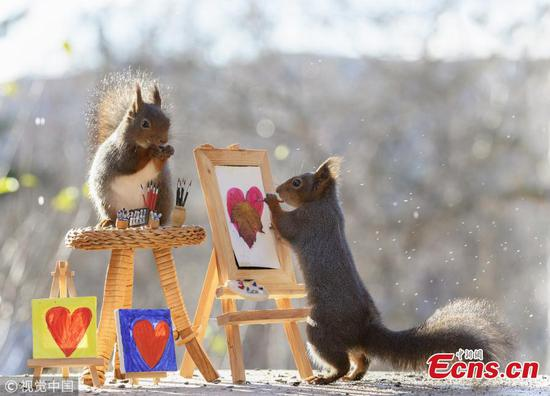 Photographer captures photos of wild squirrels 'painting' at courtyard