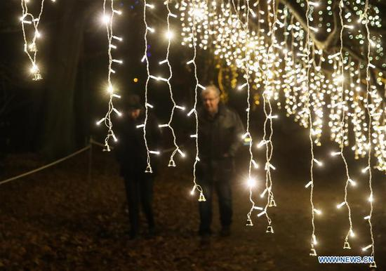 'Christmas Garden Berlin' light show kicks off in SW Berlin