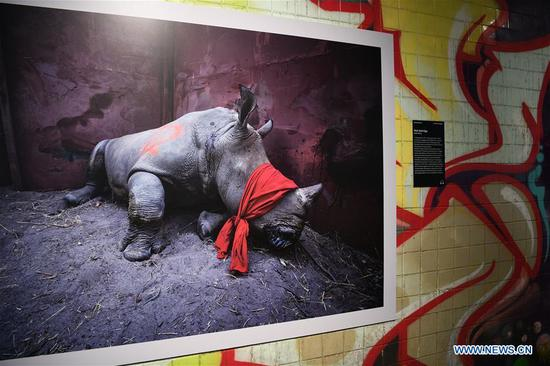 World Press Photo Exhibition 2018 held in Washington DC