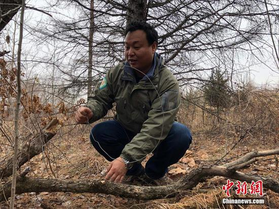 A patrol officer clear traps. (Photo/China News Service)
