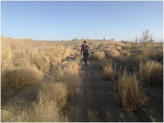 'Lone rangers' in Xinjiang desert